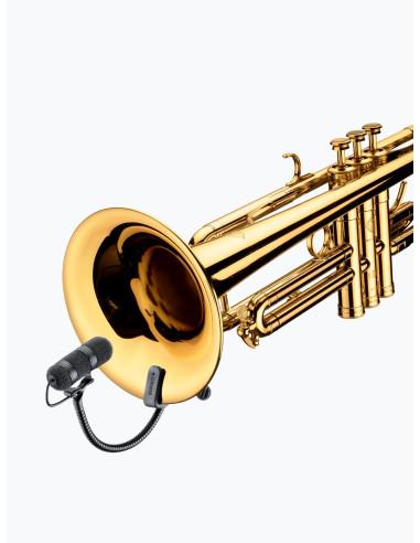 4099 Trompette